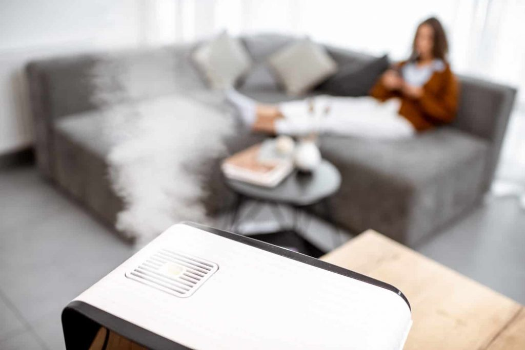 Best Humidifiers For 1000 Square Feet